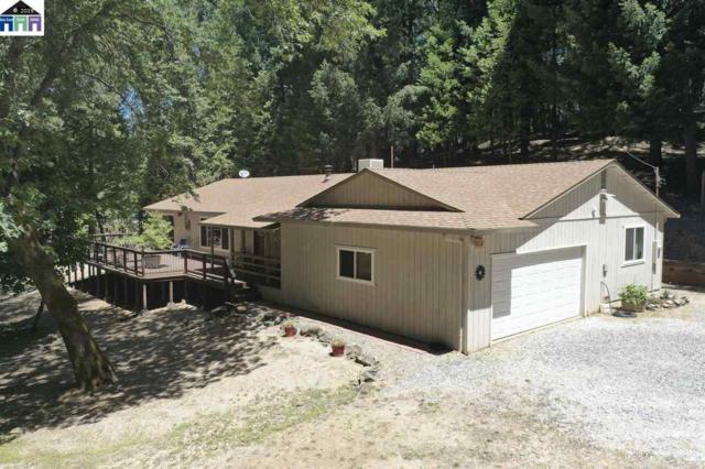 1535 Skull Springs Rd, WEST POINT, CA 95255 (#MR40875187) :: Strock Real Estate