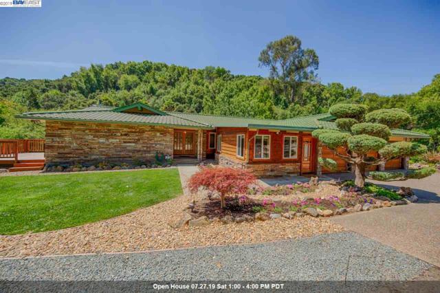 27879 Palomares Rd, Hayward, CA 94552 (#BE40875350) :: The Kulda Real Estate Group