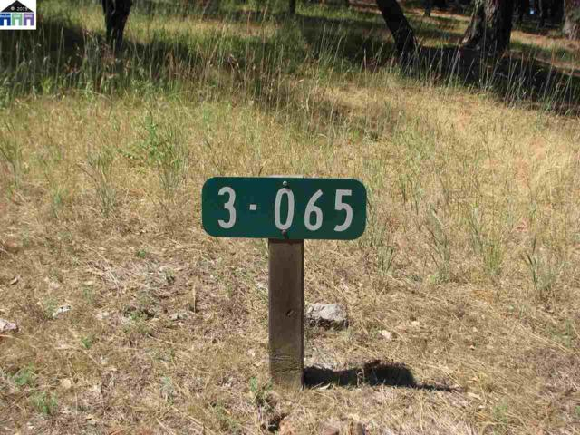 Pine Mountain Dr, Groveland, CA 95321 (#MR40877808) :: Strock Real Estate