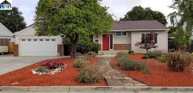 3326 Badding Rd, Castro Valley, CA 94546 (#MR40882183) :: Strock Real Estate