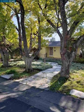78 Del Hambre Cir, Walnut Creek, CA 94595 (#CC40884347) :: The Realty Society