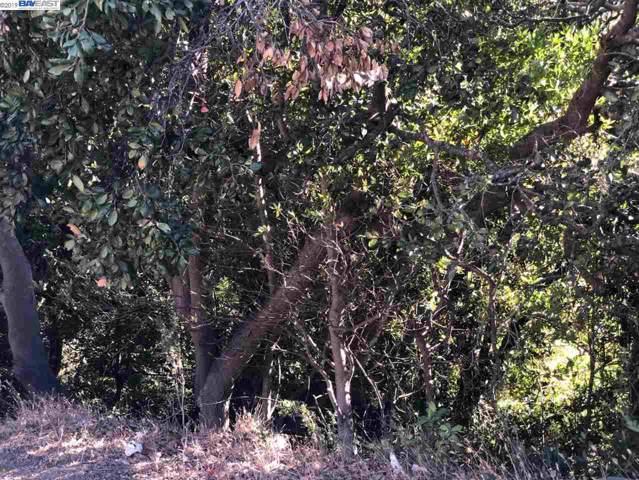 6037 E Castro Valley Blvd, Castro Valley, CA 94552 (#BE40884884) :: Maxreal Cupertino