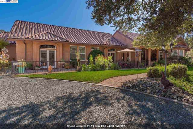 669 Spyglass Rd, Valley Springs, CA 95252 (#BE40886415) :: Maxreal Cupertino