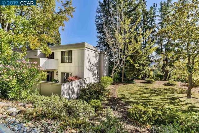 1309 Running Springs Rd, Walnut Creek, CA 94595 (#CC40887740) :: The Realty Society