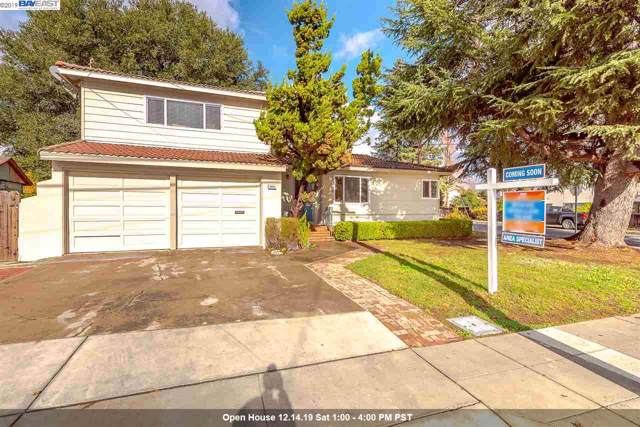 3464 Christensen Ln, Castro Valley, CA 94546 (#BE40890499) :: Real Estate Experts