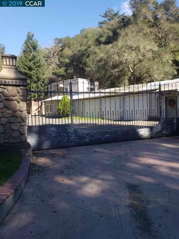 29600 Palomares Rd, Castro Valley, CA 94552 (#CC40891182) :: Strock Real Estate
