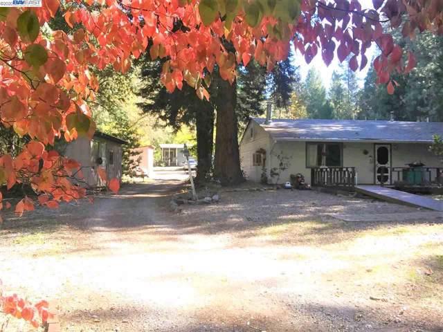 14250 Pine Grove Volcano, Pine Grove, CA 95665 (#BE40892530) :: The Goss Real Estate Group, Keller Williams Bay Area Estates