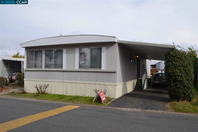252 Sinai Drive, PACHECO, CA 94553 (#CC40892689) :: The Sean Cooper Real Estate Group
