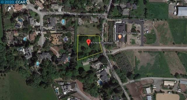 875 N Gate Rd, Walnut Creek, CA 94598 (#CC40892937) :: The Kulda Real Estate Group