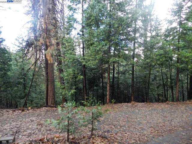 Lot211 Hitching Post Rd, Sonora, CA 95370 (#BE40893219) :: Live Play Silicon Valley
