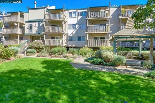 373 Half Moon Ln, Daly City, CA 94015 (#CC40900065) :: The Kulda Real Estate Group