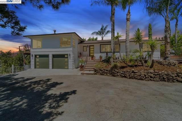 3702 Arbutus Ct, Hayward, CA 94542 (#BE40912652) :: Alex Brant Properties