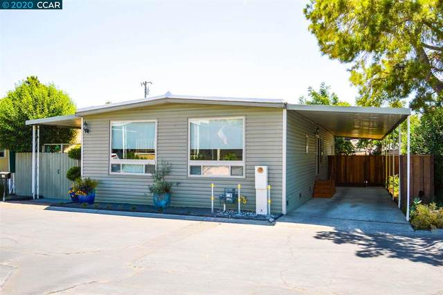 38 Terrace Drive, Concord, CA 94518 (#CC40912754) :: Robert Balina | Synergize Realty