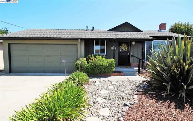 16064 Via Harriet, San Lorenzo, CA 94580 (#BE40914707) :: Strock Real Estate