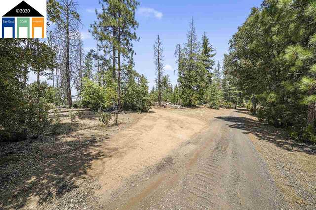 23061 Hells Hollow Rd, Groveland, CA 95321 (#MR40915502) :: The Realty Society