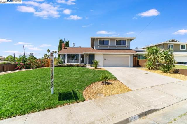 519 Starlite Way, Fremont, CA 94539 (#BE40915688) :: Robert Balina | Synergize Realty