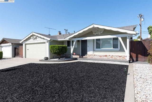 25199 Meredith Ct, Hayward, CA 94545 (#BE40916157) :: Strock Real Estate