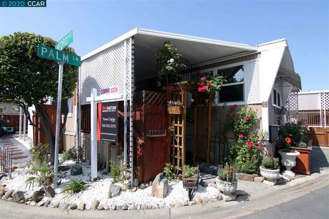60 Palm Lane, Concord, CA 94518 (#CC40921361) :: The Goss Real Estate Group, Keller Williams Bay Area Estates