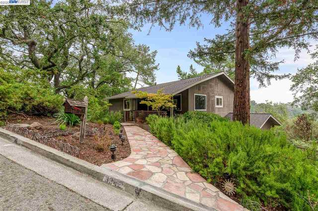 3342 Woodview Ct, Lafayette, CA 94549 (#BE40921375) :: The Realty Society