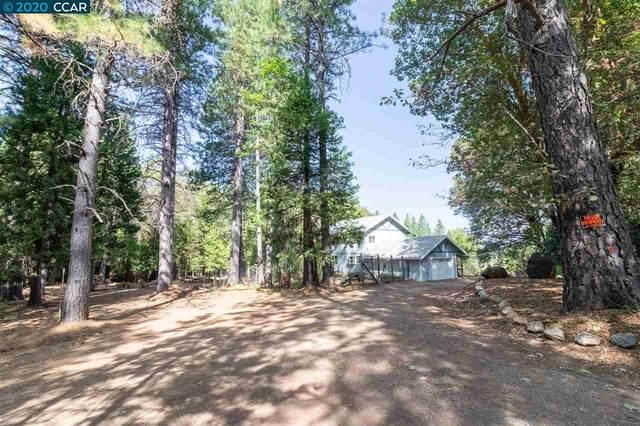 12597 Palmer, Nevada City, CA 95959 (#CC40921779) :: Real Estate Experts