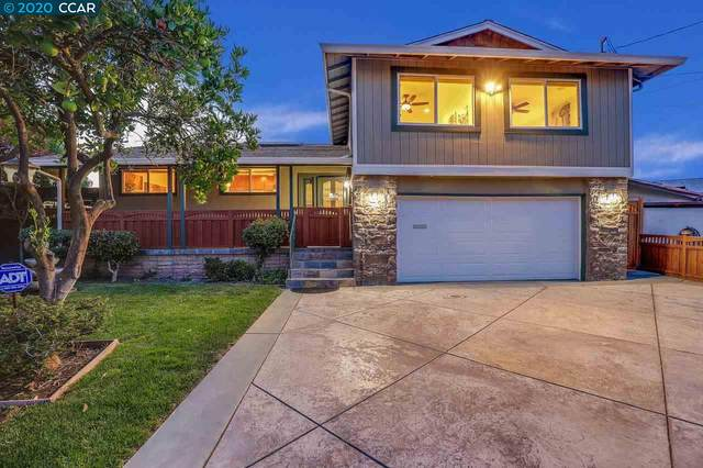10 Alhambra Ct, Antioch, CA 94509 (#CC40921225) :: Real Estate Experts