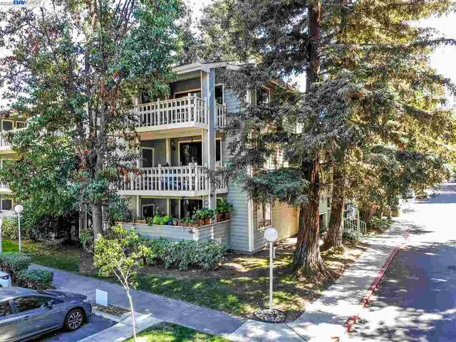 37050 Meadowbrook Cmn 104, Fremont, CA 94536 (#BE40922505) :: Strock Real Estate