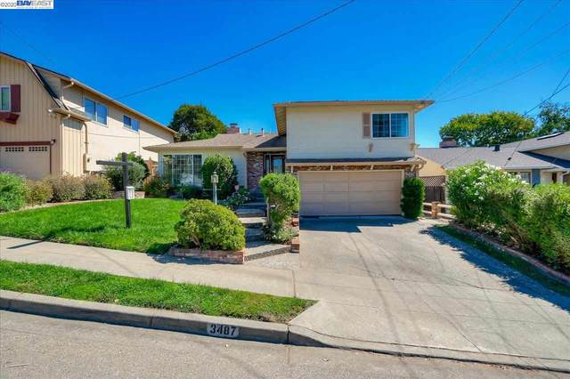 3487 Arcadian Dr, Castro Valley, CA 94546 (#BE40922832) :: The Realty Society