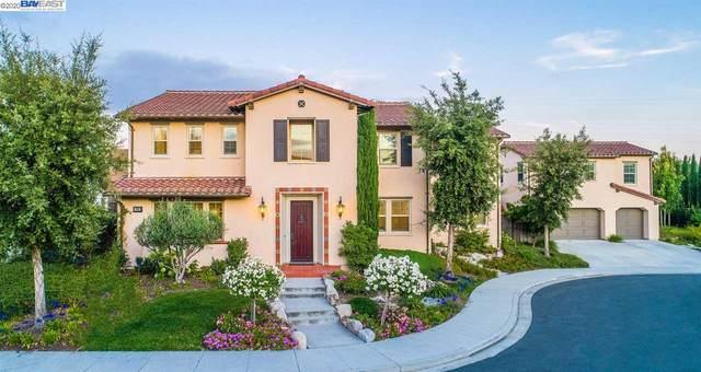 338 Harvard Cmn, Fremont, CA 94539 (#BE40922945) :: The Kulda Real Estate Group