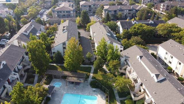 39083 Walnut Ter, Fremont, CA 94536 (#BE40923799) :: RE/MAX Gold