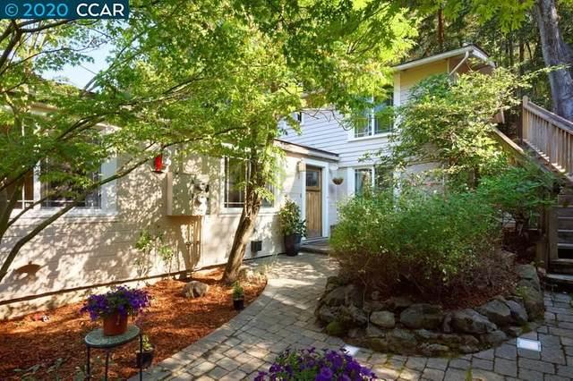 16 Brookwood Road, Orinda, CA 94563 (#CC40924621) :: Strock Real Estate