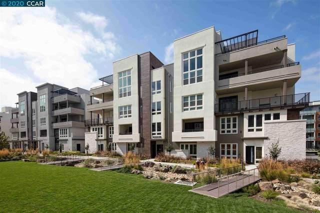 1951 Chroma Common 302, Fremont, CA 94539 (#CC40924643) :: Intero Real Estate