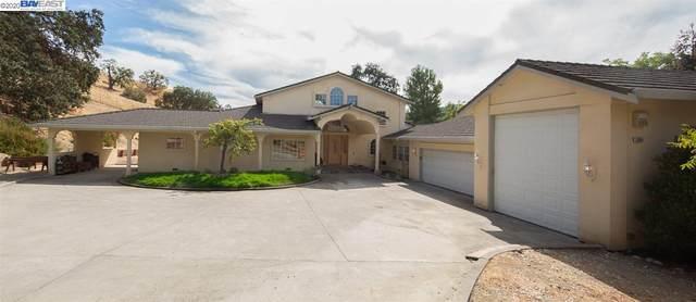 1098 Via Del Gato, Alamo, CA 94507 (#BE40924648) :: The Goss Real Estate Group, Keller Williams Bay Area Estates