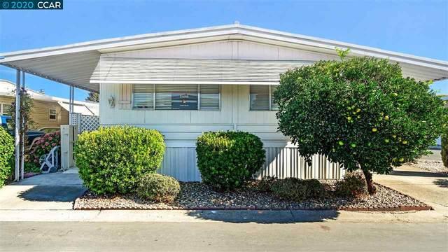 385 Avenida Flores, PACHECO, CA 94553 (#CC40925362) :: The Goss Real Estate Group, Keller Williams Bay Area Estates