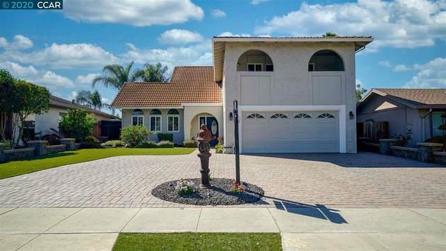 1181 Morrill Ave, San Jose, CA 95132 (#CC40925622) :: The Goss Real Estate Group, Keller Williams Bay Area Estates