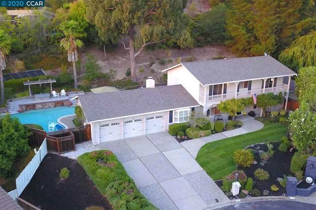 61 Mott Dr, Alamo, CA 94507 (#CC40925676) :: The Goss Real Estate Group, Keller Williams Bay Area Estates
