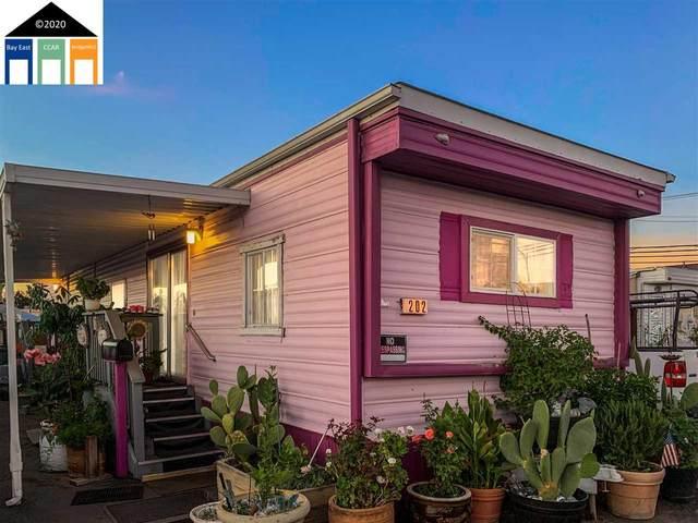 527 Mclaughlin 202, San Jose, CA 95116 (#MR40926178) :: Intero Real Estate