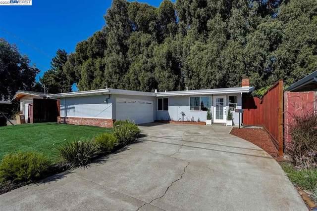 1259 Rieger Ave, Hayward, CA 94544 (#BE40926374) :: Robert Balina | Synergize Realty