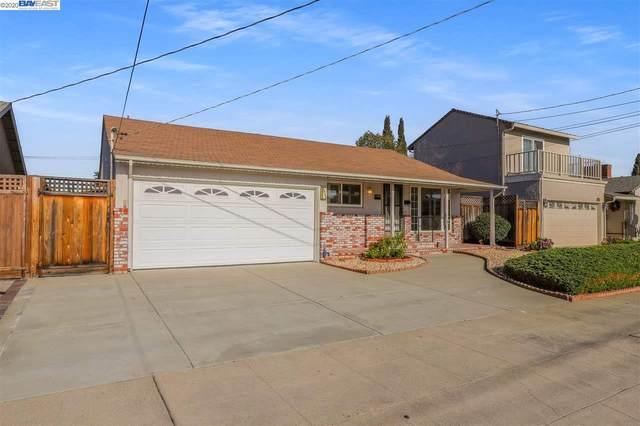 3480 Carrillo Dr, San Leandro, CA 94578 (#BE40927185) :: Strock Real Estate