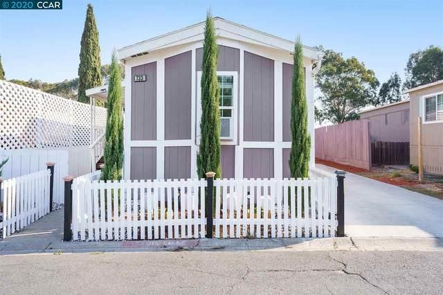 733 Treasure Dr, Bay Point, CA 94565 (#CC40928170) :: The Goss Real Estate Group, Keller Williams Bay Area Estates