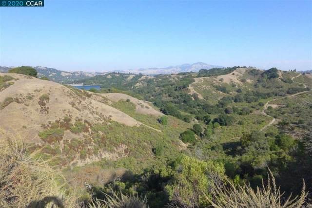 6 Patrick Ln, Orinda, CA 94563 (#CC40929666) :: Intero Real Estate