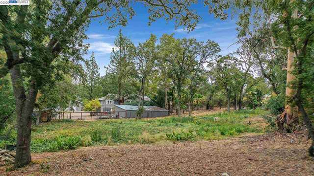 968 Happy Valley Rd, Pleasanton, CA 94566 (#BE40930076) :: Robert Balina | Synergize Realty