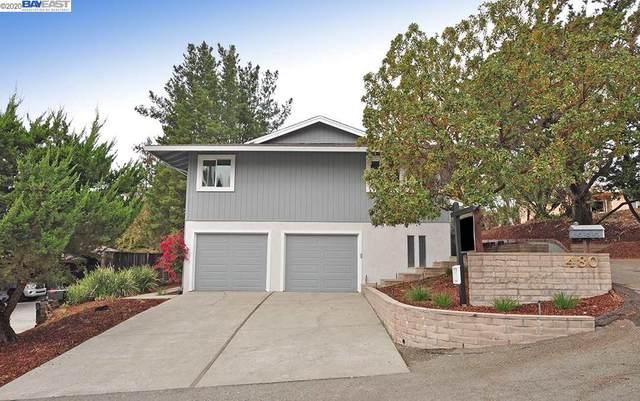 480 Pine Hill Ln, Pleasanton, CA 94566 (#BE40930393) :: Robert Balina   Synergize Realty