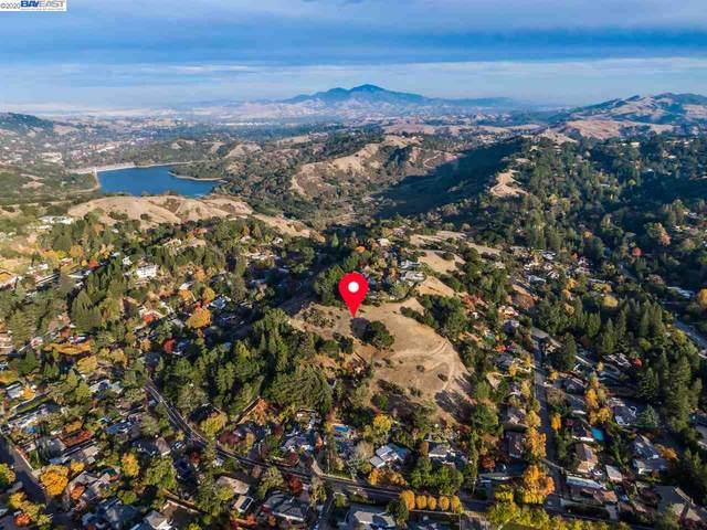 Park Lane Dr, Orinda, CA 94563 (#BE40930411) :: Intero Real Estate