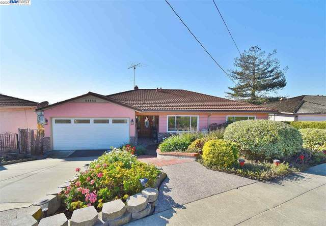 21561 Knoll Way, Castro Valley, CA 94546 (#BE40931000) :: Robert Balina | Synergize Realty