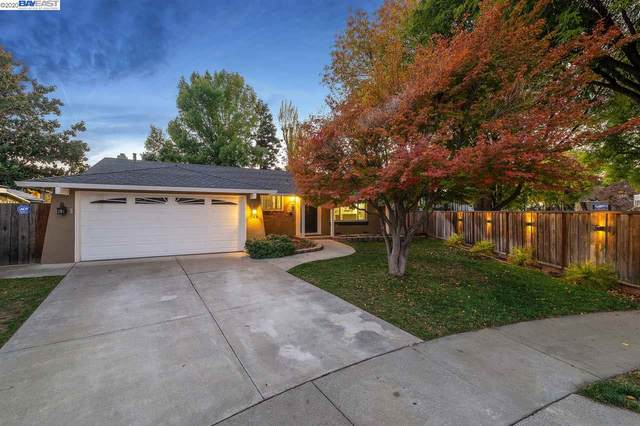 248 Canmore Ct, San Jose, CA 95136 (#BE40931010) :: The Kulda Real Estate Group