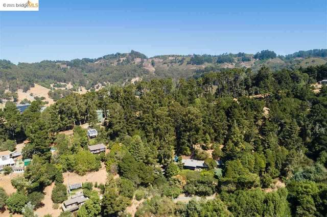 55 Panoramic Pl, Oakland, CA 94704 (#EB40934616) :: The Gilmartin Group