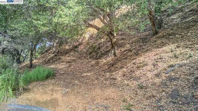 20 Lucille Way, Orinda, CA 94563 (#BE40934731) :: Intero Real Estate