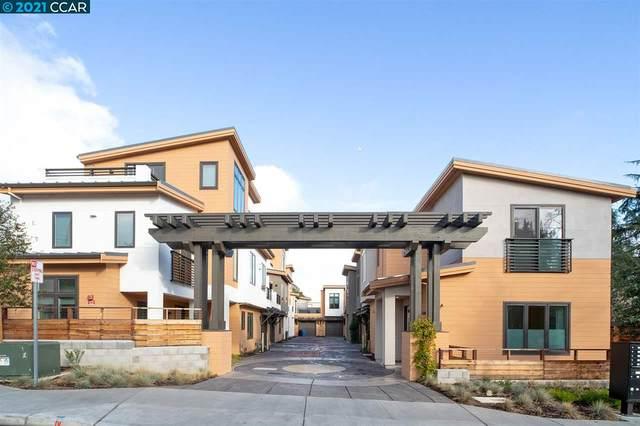 954 Mountain View Dr, Lafayette, CA 94549 (#CC40935861) :: Intero Real Estate