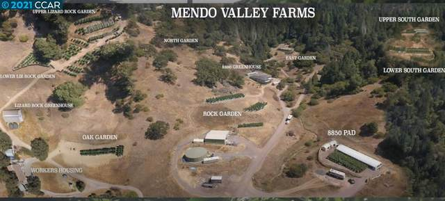 , REDWOOD VALLEY, CA 95470 (#CC40936912) :: Real Estate Experts