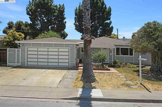 39459 Blue Fin Way, Fremont, CA 94538 (#BE40938753) :: Robert Balina | Synergize Realty